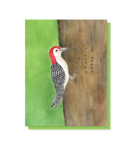 Hello Woodpecker