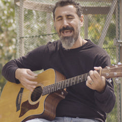 Rolling Stone Premieres The Video For Serj's New Song 'Artsakh'