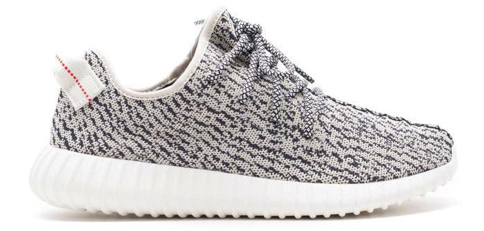 Adidas Boost 350 Turtle Dove