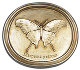 b2 Butterfly Plaque <BR> 7H 8W 1.75D