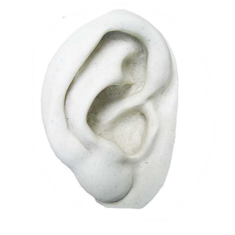 Ear: Right <BR> 6.5Hx 6.5W x 2.25D