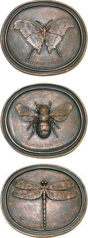 Decorative Entomology Plaque Set <BR> 7H x 8W x 1.75D ea