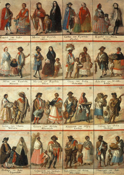A casta oil painting from Museo Nacional del Virreinato, Mexico demonstrating the Spanish colonial system which categorizes people based on racial ancestry and appearance. Casta paintings often show numbers and text which document the inter-ethnic mixing that's occurred. As more mixing occurs (less Spanish ancestry), the names often become more pejorative.