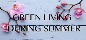 Summer Time Fun In The Sun - Summer Green Living Ideas