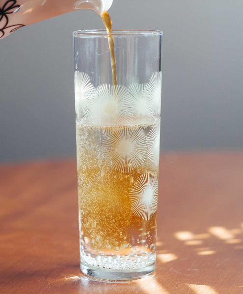 How To Make a Coffee and Tonic