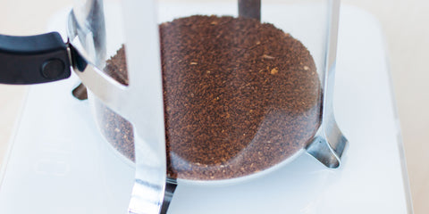 Ready to Brew - French Press - Detour Coffee