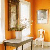 Bright tropical colors often work in contrast to dark warm floors and trim.