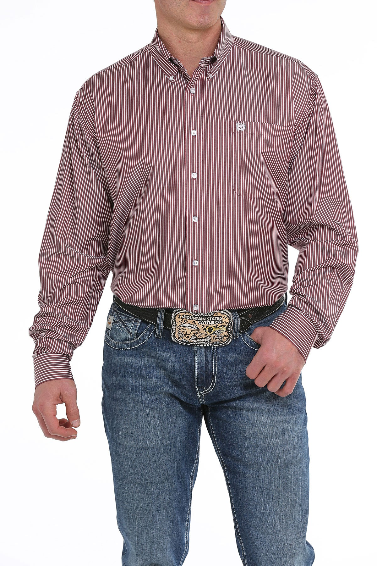 Cinch Burgundy Stripe Men's Button Down