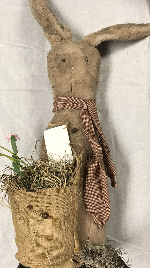 Grace The Rabbit