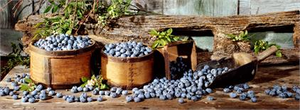 Canvas Print - Blueberries, Lg