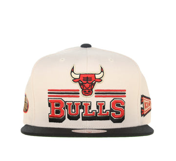 CHICAGO BULLS FAN BANNER SNAPBACK