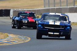 Andrew Alcazar - 1966 Ford Shelby GT 350 in Group 6 - 1956-72 Production & GT Cars over 2000cc at the 2018 SVRA Sonoma Historic Motorsports Festival run at Sonoma Raceway