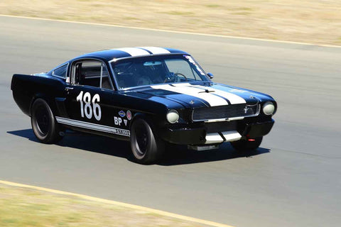 Michael Parsons - 1966 Shelby GT 350 in Group 6 - 1956-72 Production & GT Cars over 2000cc at the 2018 SVRA Sonoma Historic Motorsports Festival run at Sonoma Raceway