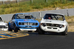 Anthony Rimicci - 1965 Alfa Romeo GTA in Group 9 SCCA Trans-Am, A-Sedans, ISA GTU& GTO cars at the 2019 CSRG Charity Challenge run at Sears Point Raceway