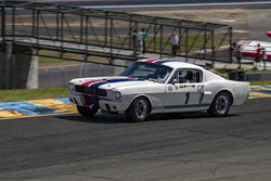 Camilo Steuer - 1966 Shelby GT350 in Group 3 1959-65 Production/GT Cars up to 5-liters at the 2019 Sonoma Speed Festival run at Sonoma Raceway/Sears Point
