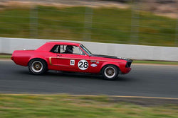 Nick DeVitis - 1968 Ford Mustang in Group 6 1966-72 Historic Trans Am at the 2019 Sonoma Speed Festival run at Sonoma Raceway/Sears Point