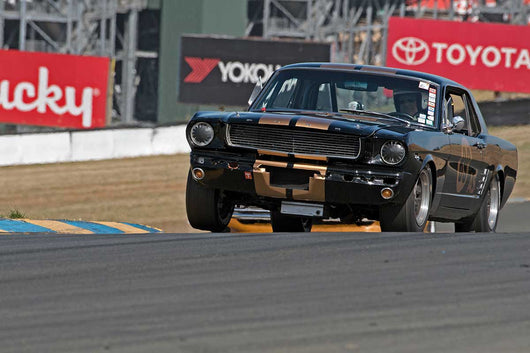 Gary Goeringer with 1966 Shelby GT 350 in Group 10 at the 2016 SVRA Sonoma Historics - Sears Point Raceway