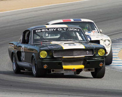 Terry Lawlor with 1966 Shelby GT350 in Group 1A - Pre 1940 Sports Racing and Touring Cars at the 2015-Rolex Monterey Motorsport Reunion, Mazda Raceway Laguna Seca