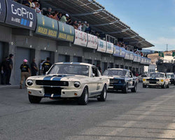 Group 3A - 1965-1970 Shelby Mustang Cars at the 2015-Rolex Monterey Motorsport Reunion, Mazda Raceway Laguna Seca