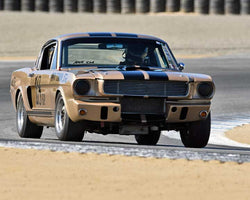 Peter Reed with 1966 Shelby GT350 in Group 1A - Pre 1940 Sports Racing and Touring Cars at the 2015-Rolex Monterey Motorsport Reunion, Mazda Raceway Laguna Seca
