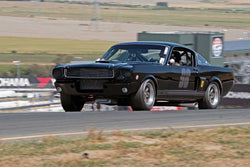 Andrew Alcazar with 1966 Shelby GT350 in Group 6 -  at the 2016 SVRA Sonoma Historics - Sears Point Raceway