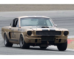Peter Reed driving his Shelby GT350 in Group 6 at the 2015 HMSA Spring Club Event at Mazda Raceway Laguna Seca