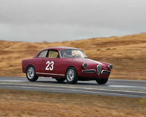 Glenn Oliveria with 1955 Alfa Romeo Giulietta Sprint in  Group 1 at the 2015 Season Finale at Thunderhill Raceway