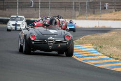 Peter Inshaw with 1963 Alfa Romeo Guilia Spider 1600 in Group 3 -  at the 2016 SVRA Sonoma Historics - Sears Point Raceway