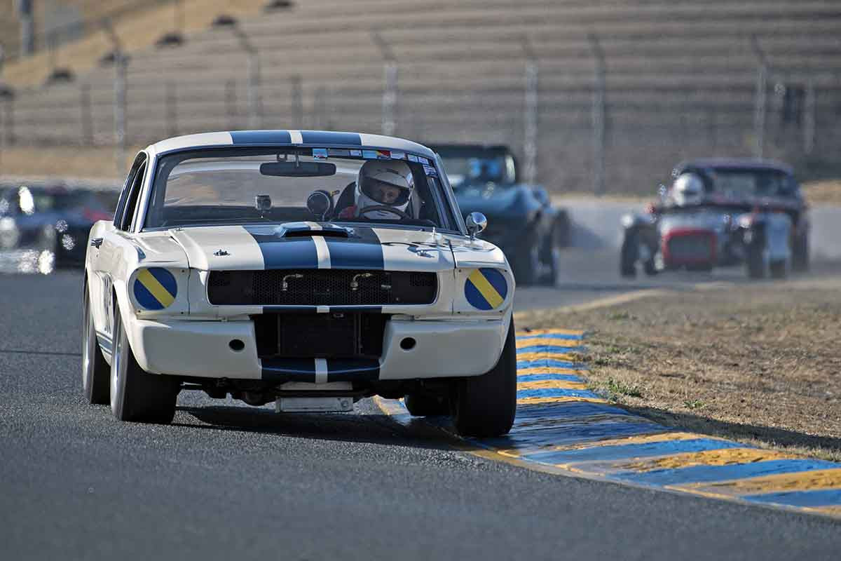 Tom Fry - 1966 Ford GT350 in Group 3 -  at the 2016 Charity Challenge - Sonoma Raceway