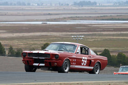 Lindsay Ross - 1966 Shelby GT350 in Group 3 -  at the 2016 Charity Challenge - Sonoma Raceway