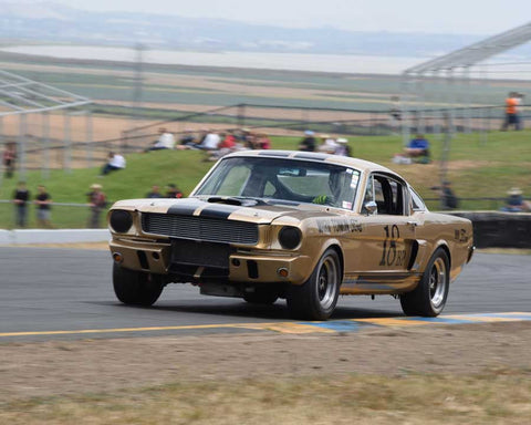 Peter Reed with 1966 Shelby GT350 in Group 6 - 1962-1972 Production and GT Cars Over 2000cc at the 2015 Sonoma Historic Motorsports Festival at Sonoma Raceway