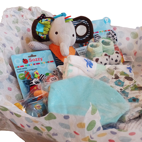 Gifts Are Blue Stork Newborn Baby Boy Bundle Gift Set (8 Items)