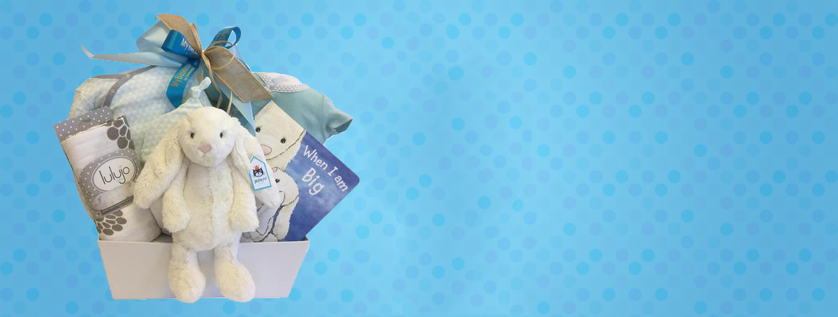 Baby Gift Baskets Free Delivery Canada