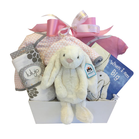 Baby get well christmas gift baskets toronto canada free delivery baby gift baskets negle Images