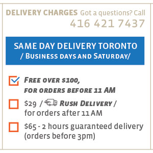Same day Gift Delivery Toronto.