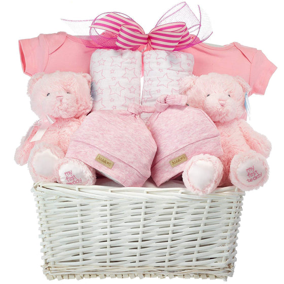 Twin Girls Baby Basket