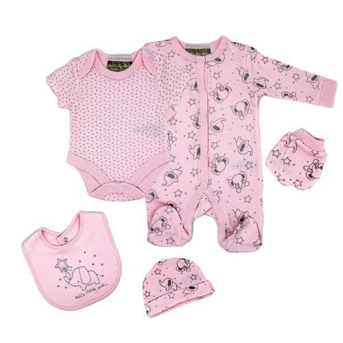 Baby Girl 5 Piece Set