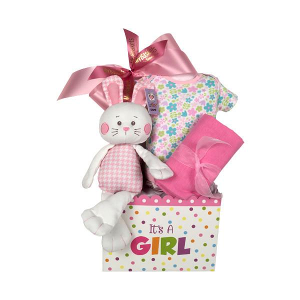 Baby Gift Basket Same Day Delivery : Baby gift baskets free toronto same day delivery canada