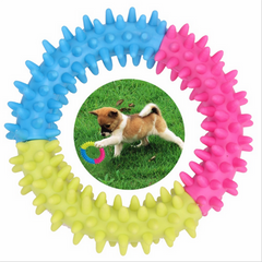 Rubber Spinose Ring Dog Toy
