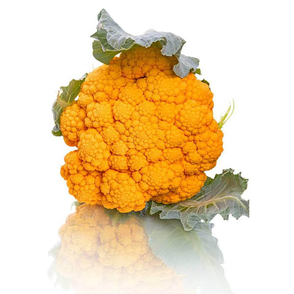 Brand New! Healthy vegetable seeds golden cauliflower seed selling small family garden 100seed-Rama Deals