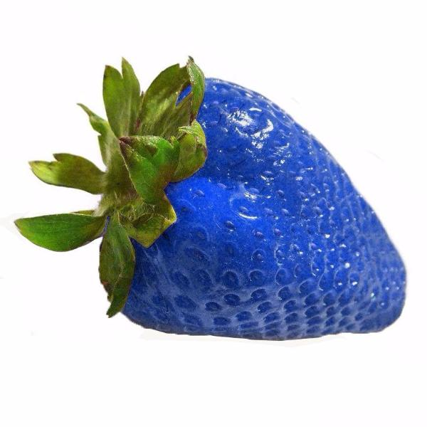 Clearance Juicy Strawberry Fruit seeds-Rama Deals