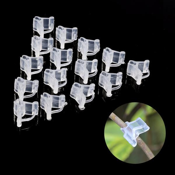 100 Units Transparent Grafted Plants Clips-Rama Deals