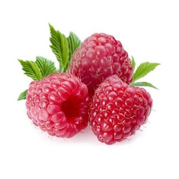 Red Raspberry Seeds (20 Seeds)-Rama Deals