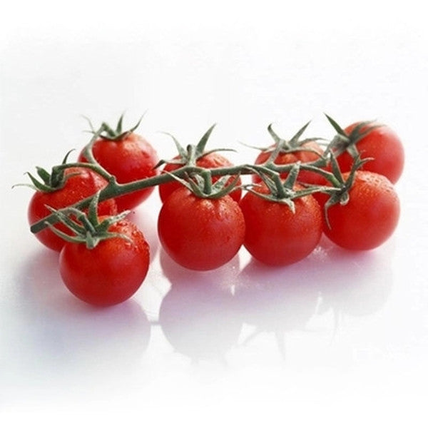 Tomato Seeds (100pcs/pack)-Rama Deals