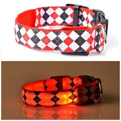 LED Fun Dog Collar - Rama Deals - 1