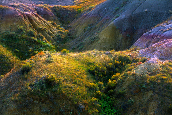 Color landscape photography by film photographer John Crane