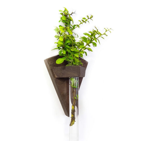 Rectangular Wooden Bud Vase Wall Sconce