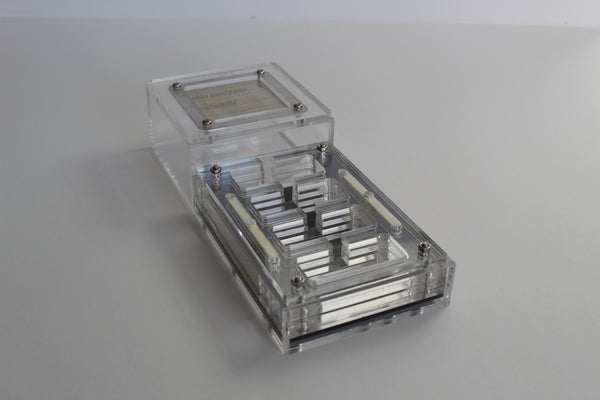 Formicarium Stronghold (£10 off Special)