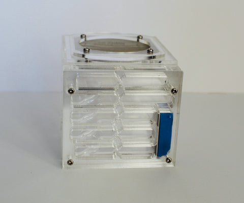 Formicarium Pandora Acrylic nest and built in out world (£5 off, limited time)
