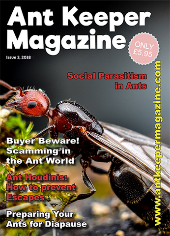 Ant Keeper Magazine